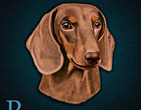 Digitally painted Dachshund dog in Photoshop CC