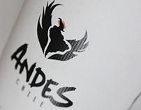 """Wine """"Andes de Chile"""""""