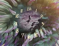 The Passion Calendar