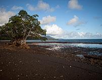 New Caledonia, France
