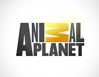 Motion Graphic, Tv Show. discovery channel.
