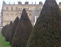 Chez Louis XIV
