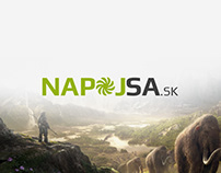 Webdesign and logo - Napojsa.sk