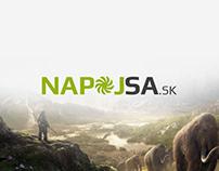 Webdesign and logo - Napojsa.sk