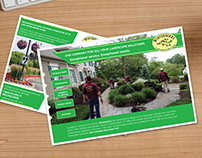 Winterberry Direct Mailer