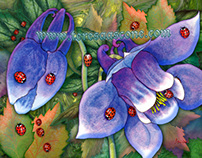 Creatures of the WIld - Ladybugs on Blue