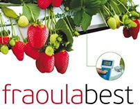 FraoulaBest (hydroponic strawberry)