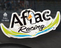 2010 Aflac Racing Website