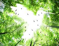 BirdFair Unicentro Cali 2016
