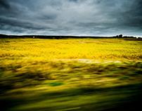 Ukraine 2012 - Landscape