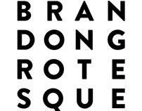 Brandon Grotesque / Specimen