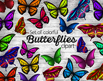 Set of realistic vector colorful butterflies clipart