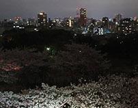 Japan, Sakura-Time