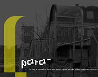 Typeface Design & Specimen: para-