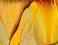 Klüber Lubrication  |  Imagekampagne
