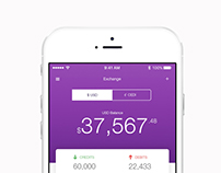 Kruma Financial iOS Application