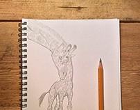 Animals, sketches