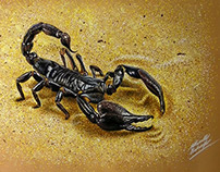 Drawing Scorpion