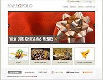 Website Design & Development of Marcopolo.ie