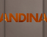 Andina Capital Management