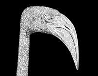 Note bird