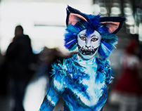 MCM Expo 2012: Cats