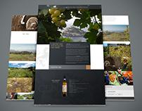 Vini Cenatiempo, web design