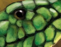 Snake-illustration photoshop