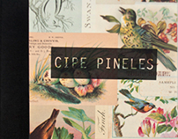 Cipe Pineles / Book Design
