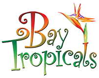 Bay Tropicals Logo