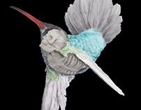 Skull Hummingbird