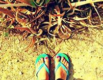 Exploring Kutchh