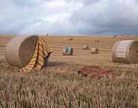 Hay Bales and Swedish Rugs