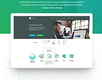 Landing page design for Consulting Company ARENA DATA