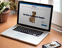 PetSmart Site Replatform and Redesign