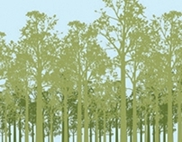 Acidente Zero Florestal
