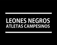 Leones Negros Y Atletas Campesinos / Queretaro, Mexico