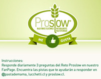 Aplicación para Facebook Proslow - Lucchetti