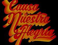 POSTERS CAUSA DE NUESTRA ALEGRÍA