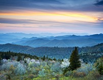 The great Smoky Mountains and the Blue Tree path
