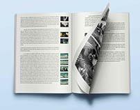 Mémoire de fin d'études, les aventures de Saturnin