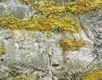 The Borgias (2012)  sulphure surfaces