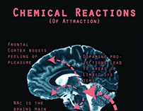 Chemical Reactions of Attraction