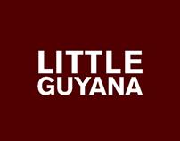 Branding: Lil' Guyana Town