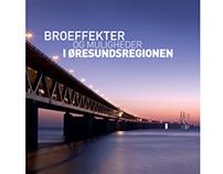 Broeffekter og muligheder i øresundsregionen