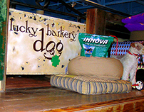 Lucky Dog Branding Design