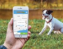 Townward Dog | Phone Application