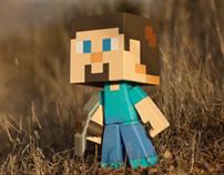 Steve, the Hero of Minecraft