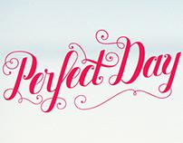 Seiko Perfect Day
