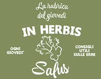 In herbis salus.
